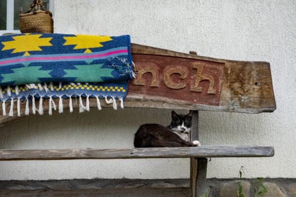 Roemenië: gastvrijheid in Zarnesti